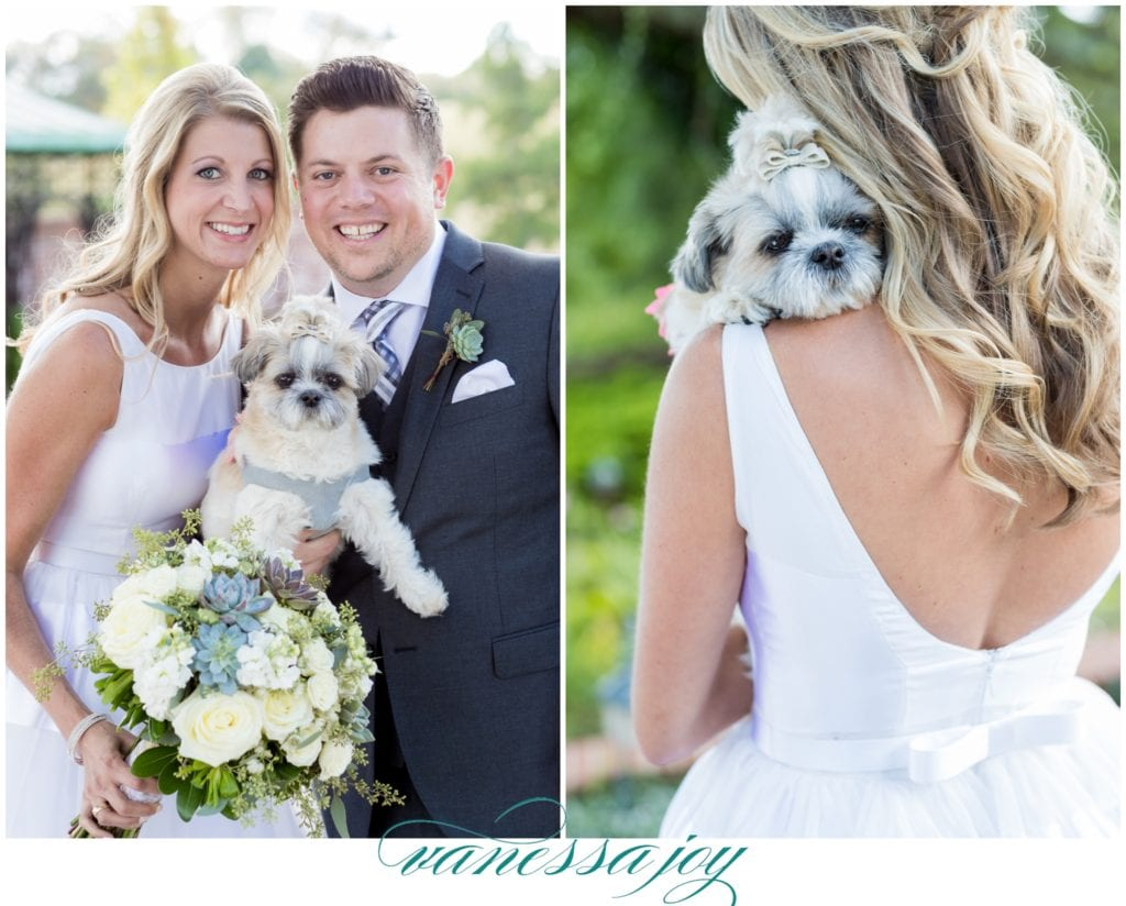 dog in wedding, adorable dog in wedding, fur mama