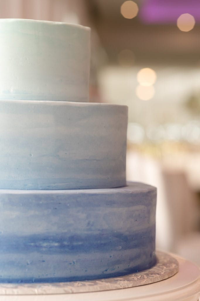 chocolate carousel wedding cake, 3 tiered blue wedding cake