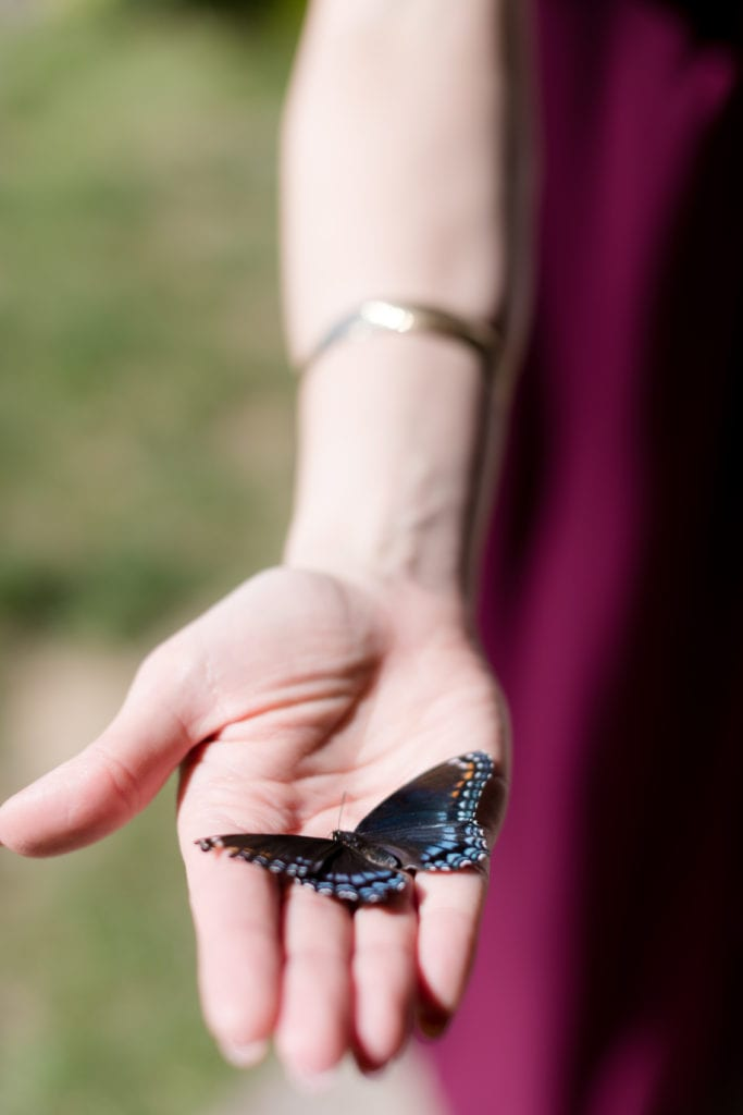 colorful butterfly, nj wedding photographer